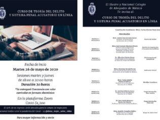 Curso de Teoría del Delito y Sistema Penal Acusatorio en Línea