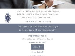 Estrategias de litigio en la etapa intermedia del proceso penal
