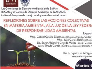 REFLEXIONES SOBRE ACCIONES COLECTIVAS EN MATERIA AMBIENTAL A LA LUZ DE LA LEY FEDERAL DE RESPONSABILIDAD AMBIENTA