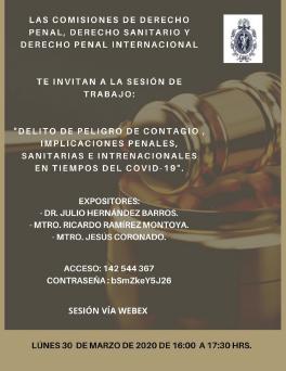 Sesión de Trabajo Impartido Por: Las Comisiones de Derecho Penal, Derecho Sanitario y Derecho Penal Internacional.